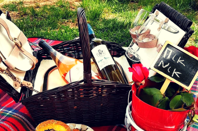 Picnic at the vineyard